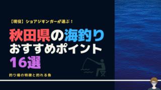 秋田の海釣りポイントのアイキャッチ画像