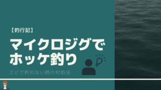 マイクロジグでホッケを釣った釣行記事のアイキャッチ画像