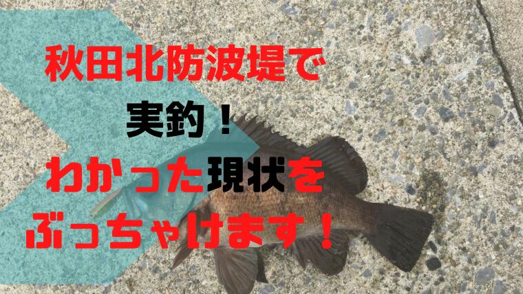 秋田北防波堤が開放!釣果やオススメの釣りをぶっちゃけます!
