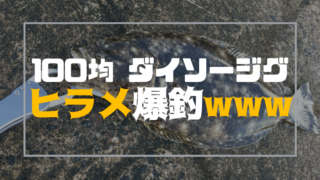 ヒラメが釣れるダイソージグ!100円で魚が釣れるコスパ最高ジグ!